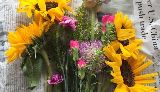 お花の定期宅配便が来た。
